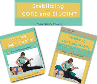 Stabilizing the Core and the SI Joint Home Study Course